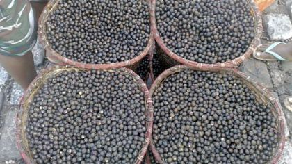 Acai berries Acai berries are supposed to have twice the anti-oxidants of blueberries.