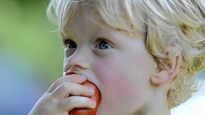 Churchview Farm Elliot Morris, 2, munches on a tomato at Churchview Farm run by Tara Rockacy and her husband Todd Pander in Baldwin.