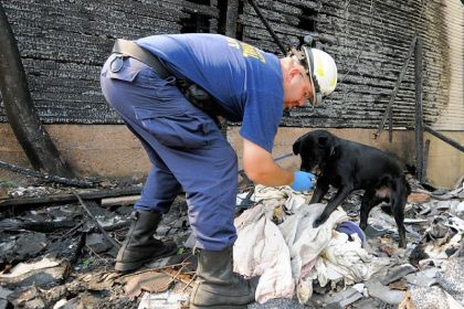 Coal at work Allegheny County Chief Deputy Fire Marshal Don Bruckner feeds Coal, the department's arson dog, from his hand after the dog successfully pinpointed an accelerant sample during a daily training exercise in 2010 at the scene of a months-old fire on Martin Alley in McKeesport. Coal is a food-reward dog, and his daily meals from Mr. Bruckner's hand are part of his success in training.