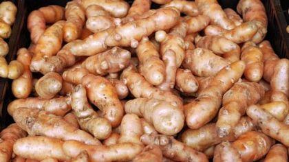Fingerling potatoes Fingerling potatoes.