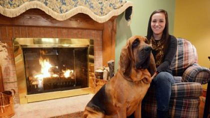 Kara Berestecky and Otis Kara Berestecky of Bethel Park with her bloodhound Otis.