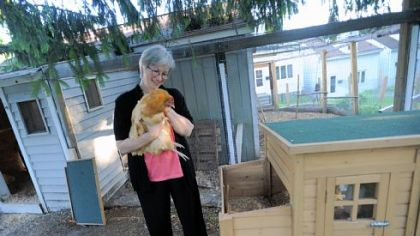 Nancy Chubb with Zoe Nancy Chubb with Zoe, a Buff Orpinger chicken, at their home in the city's Spring Hill neighborhood.