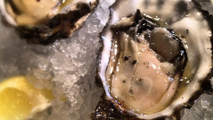 Oysters get em now Get your bivalve on at Salt.