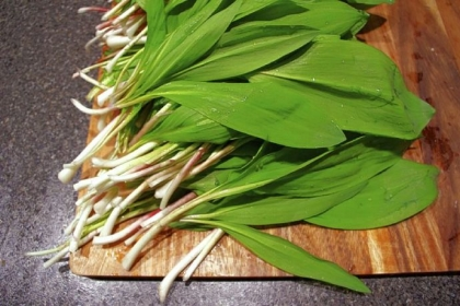 Ramps Ramps.