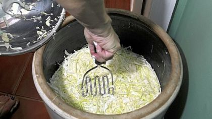 Sauerkraut crock Crocks used in the fermenting process.