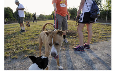 South Side Dog Park Josh Linton keeps his dog on a leash as he talks to Beth Reeger at the newly opened and dedicated South Side Dog Park.
