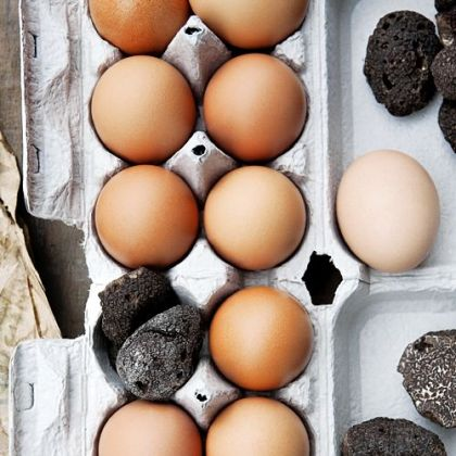 truffles 2 Eggs simply stored with truffles pick up their flavor.