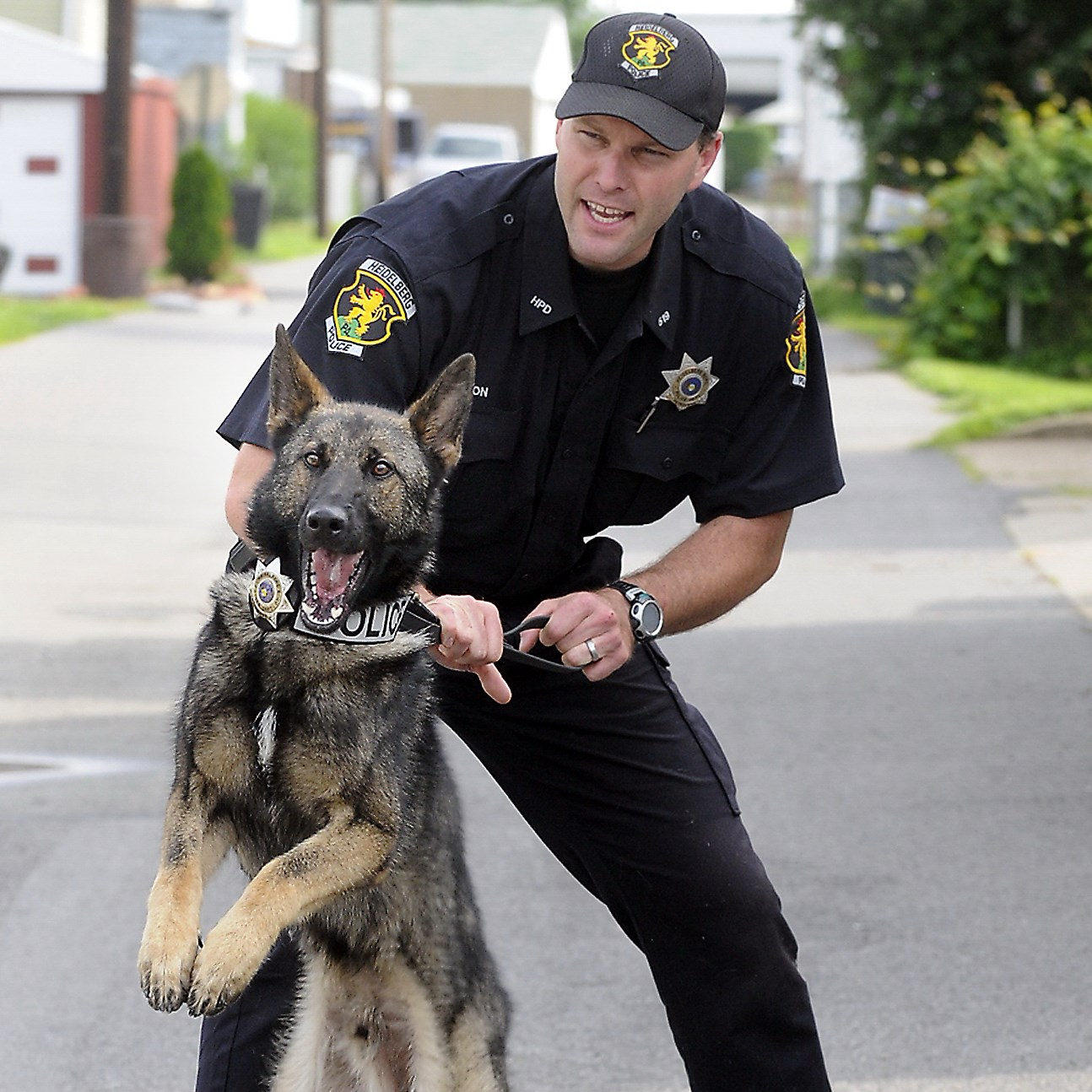 Heidelberg police Officer Dennis Dixon works with the force's  police dog, Rocky, in 2008.