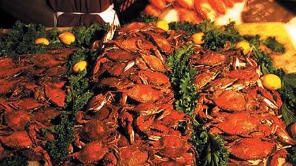 live crab sale baltimore inner harbor