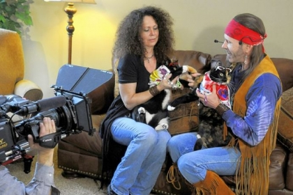 Pet Tales Cruising Cats Drive Into Tv Ads Pittsburgh