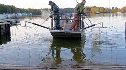 Fishing where are the walleye pittsburgh post gazette for Pymatuning fishing report