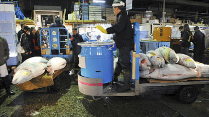 Tokyo fish market overwhelmed by tourists pittsburgh for Fish market pittsburgh