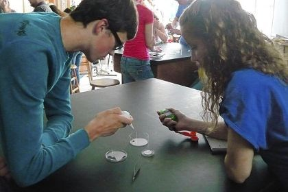 students test personality Students Madie Pochatko and Robert Wilt test the personality of an African colonial social spider in biology class at Greenville High School.