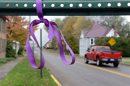 20131023radBullyWalkLocal05-4 Every mile Elliot London and Ronnie Kroell walk, they attach a purple ribbon to a sign or tree, similar to the one pictured at left, along Main Street in Prospect, Butler County.