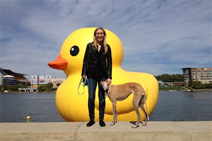 dog&duck.jpg Martha and dog Gabby with the rubber duck on the background