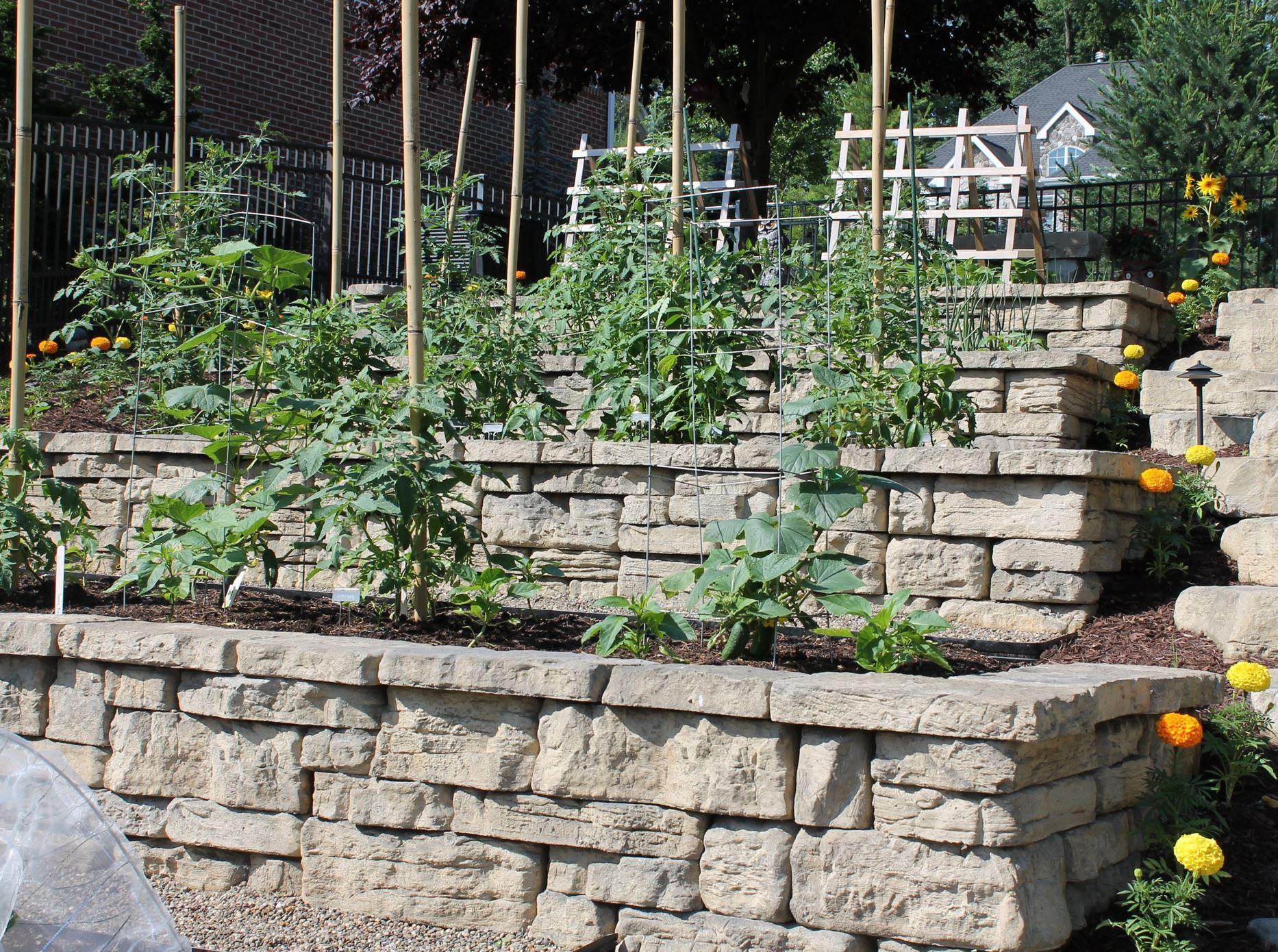 Great gardens contest winner in canonsburg memories of for Terrace vegetable garden