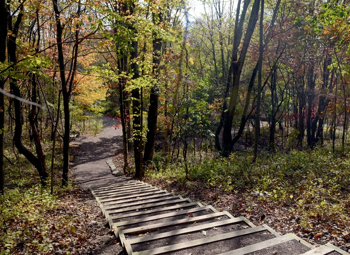 PittsburghBotanicGardenMag07-6 A pathway at the Pittsburgh Botanic Garden is surrounded by colorful fall-leaves.