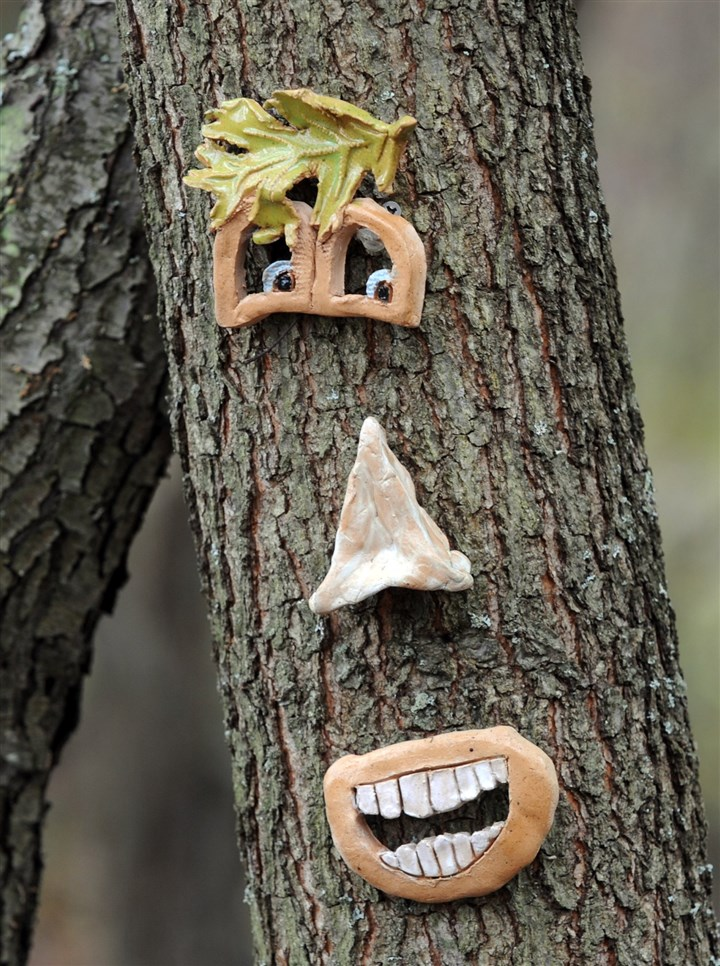 PittsburghBotanic A Girl Scout troop placed faces on trees throughout the Pittsburgh Botanic Garden.