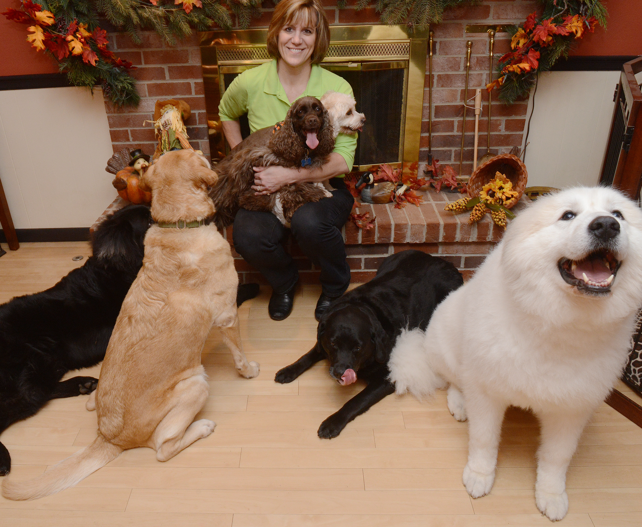 "20131031rldDogWagLocal01 Dog trainer and educator Penny Layne with her six dogs Thursday at her Irwin home. Ms. Layne and other local pet experts say they aren't sure what to make of the results of a study by Italian researchers on dogs' tail-wagging signals. ""You really have to look for a while to see if the tail is going left or right. You can't waste that much time if your life is threatened."""