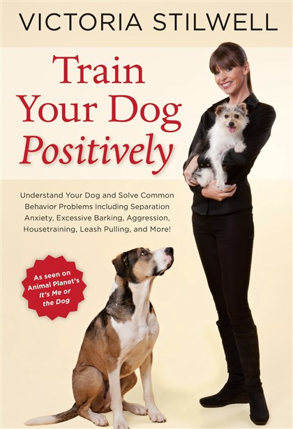 stillwellmag3-1 'Train Your Dog Positively'
