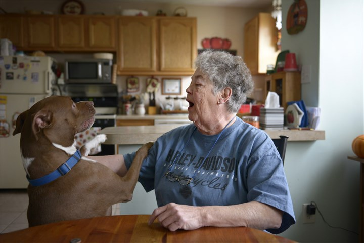 20131121jrFinkLocal1 Jean Fink, seen here at her Carrick home with her dog, Tippy, is leaving the board of the Pittsburgh Public Schools after more than 30 years in office.