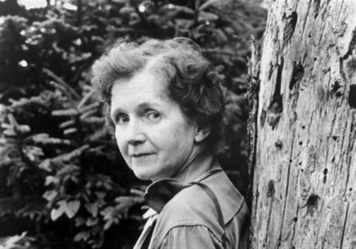 """rachel carsons environmental concern essay """"the rachel carson homestead association,"""" reported pittsburgh lives charlie ban (2006), """"will celebrate carson's 100th birthday to discuss the environmental ideas that she generated (p 1) these ideas, he asserts, """"continue to shape public and private policy in the region and worldwide."""