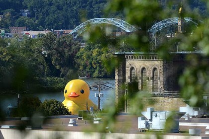 ducky prep main A crew prepares the 40-foot inflatable rubber duck, a global project by Dutch artist Florentijn Hofman, on the Ohio River near the McKees Rocks Bridge on Friday.