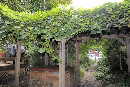 Garden Tour mex streets One of its best features of the garden is an L-shaped grape arbor that supports wild grapes and sweet autumn clematis. Mr. French and Ms. Hancock say the arbor with a dining table beneath it is a favorite spot for long lunches, late dinners and many parties.