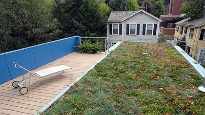 Living roof in Shadyside The living roof of Eric and Mary Fisher's Shadyside home. Mr. Fisher will discuss the roof and house he designed at the Pittsburgh Design Fair on Sunday.
