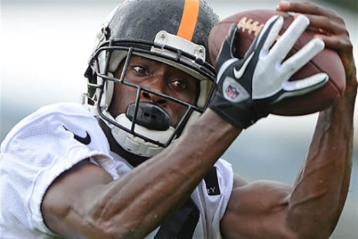 brown Antonio Brown will be the Steelers' clear-cut No. 1 receiver after the departure of Mike Wallace.