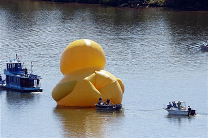 ducky prep duckbutt A crew works to inflate the 40-foot rubber duck on the Ohio River near the McKees Rocks Bridge on Friday.