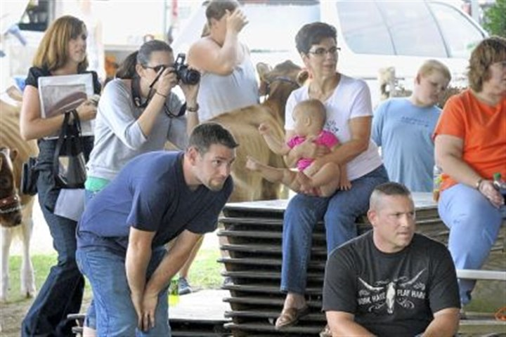 Frye family Chad Frye, left, and his brother Todd Frye intently watch as Todd's kids, Emily, 9, and T.J. Frye, 7, show calves. Behind them is Todd's wife, Carolyn; Chad's wife, Jennifer; and mom, Ann, holding granddaughter, Avery, 9 months.