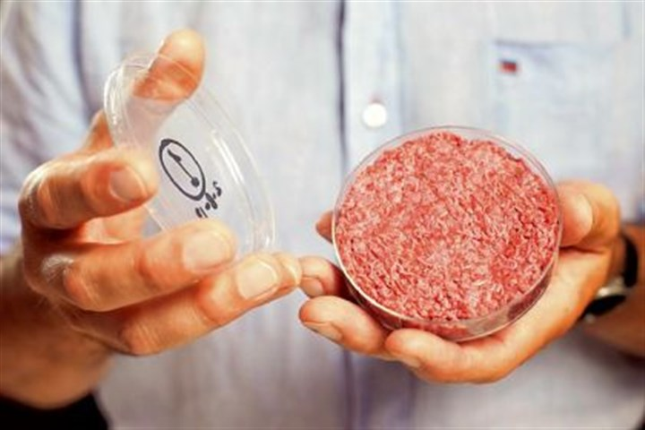 lab grown beef The world's first lab-grown beef burger.