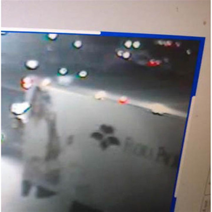 police surveillance strip van Pittsburgh Police say this vehicle may have been involved in a fatal collision today in the Strip District. Anyone with information is asked to call 412-323-7161. Callers may remain anonymous, police said.