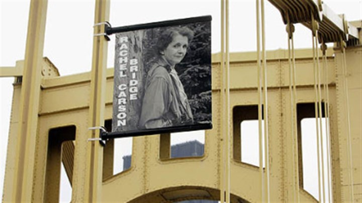 Rachel Carson bridge A banner with a photograph of Rachel Carson hangs from supports on the bridge bearing her name across the Allegheny River in 2006.