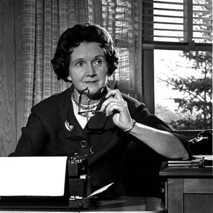 "Rachel Carson older Rachel Carson, author of ""Silent Spring,"" is seen typing in her library at home in Washington D.C. on March 13, 1963."