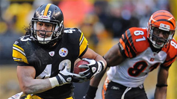 Troy Polamalu Steelers safety Troy Polamalu is dealing with a lower-leg injury.