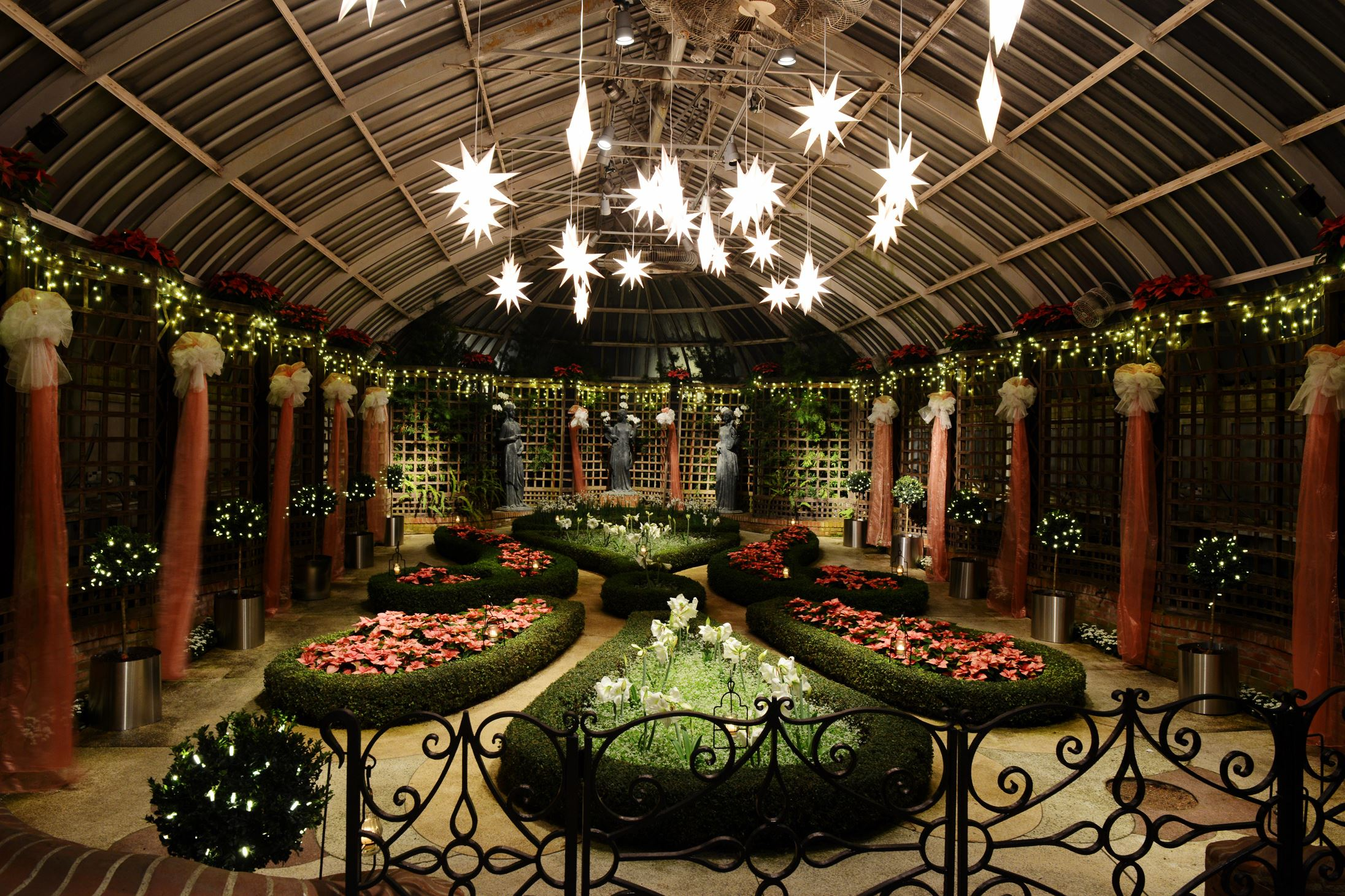 phipps lights up with winter flower show and winter light garden pittsburgh post gazette