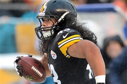 20131208pdSteelersSports06-7 The Steelers' Troy Polamalu heads for the end zone after an interception against the Dolphins on Sunday.