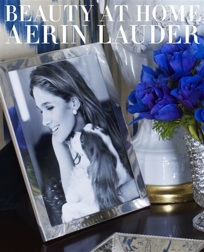 Lauderhome 'Beauty at Home' by Aerin Lauder.