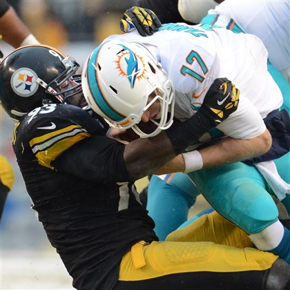 20131208pdSteelersSports13 Steelers OLB Jason Worilds sacks Dolphins QB Ryan Tannehill in the first quarter Sunday at Heinz Field.