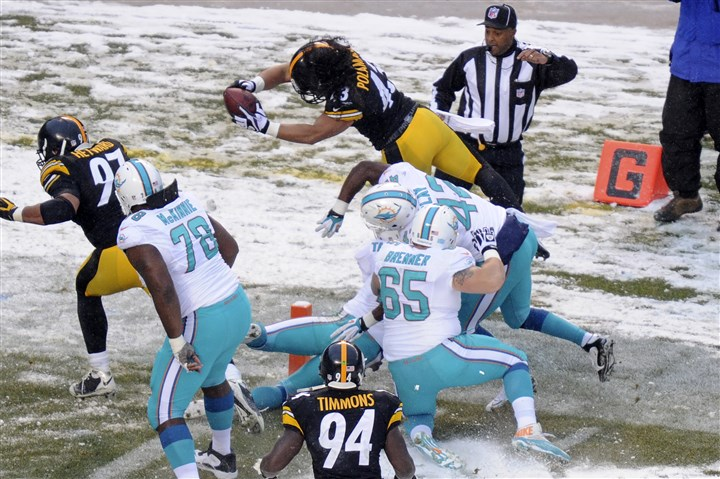 steelers vs. dolphins, troy polamalu, troy polamalu's last interception, troy polamalu pick six,