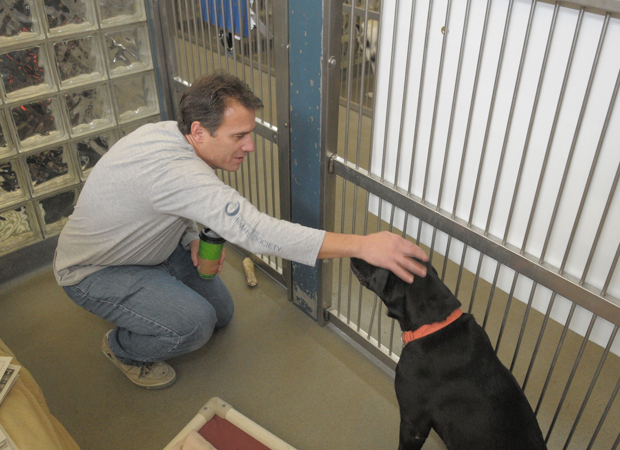 20131214ttHumaneMag2-1 Dave Janusek, executive director of the Western Pennsylvania Humane Society, pets Kisser, a mastiff-Labrador mix, as he starts an overnight stay in Kisser's kennel at the society's facility on the North Side.