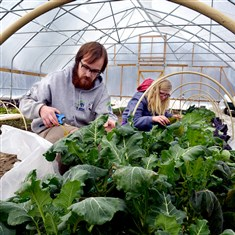 Eden Hall planting Drew Cranisky and Hanna Mosca, graduate students and assistants in food studies at the Eden Hall campus of Chatham University in Richland, tend to vegetables growing in a greenhouse made of plastic tunnels.