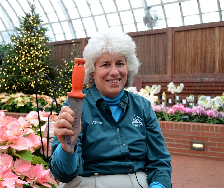 Oster_tools_claire_knife Claire Dusak, outdoor display foreman at Phipps Conservatory and Botanical Gardens with her soil knife.