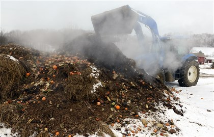 20140131dsCOMPOST02-1 Steam rises as Dave Anderson turns over one of the mounds of compost. Mr. Anderson is one of six farmers who joined a project orchestrated by the Pennsylvania Resource Council to divert waste produce to farms to improve soil content.