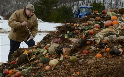 20140131dsCOMPOST01 Dave Anderson uses a thermometer to get the temperature of one of the mounds of compost. Most piles are between 100 and 140 degrees, even in the winter.