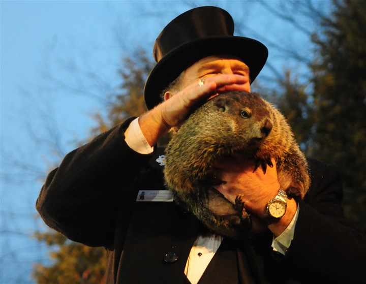Punxsutawney Phil Punxsutawney Phil takes a pat on the back from his handler John Griffiths before making his prediction for spring at Gobbler's Knob in Punxsutawney.