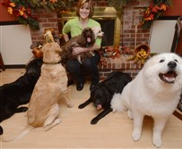 Penny Layne of Irwin with her six dogs at home.