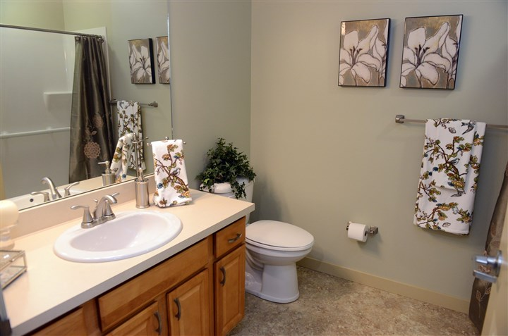 bathroom in the one bedroom apartments The bathroom in the one bedroom apartments features a walk-in shower.